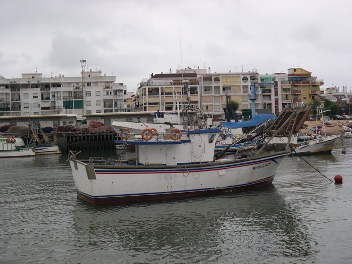 pesca draga hidráulica