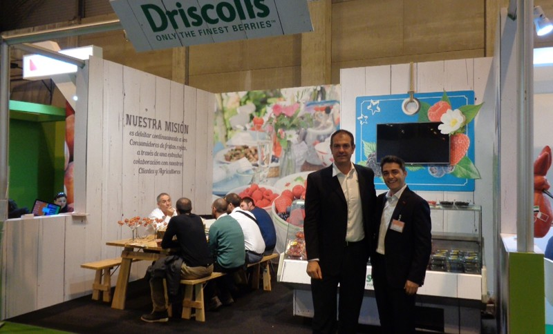 driscoll's-fruit