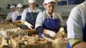 Seis empresas de Huelva se beneficiarán de estas subvenciones.