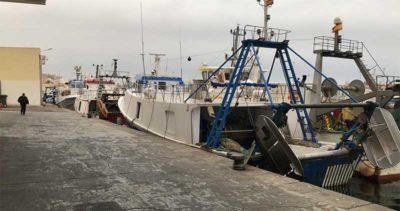 Paro pesca mediterráneo